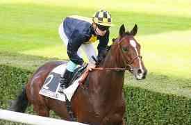 Investir dans un cheval de course: acheter en multipropriété est-il rentable ?